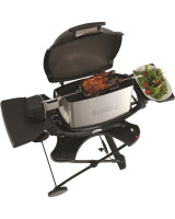 Weber Girarrosto per Barbecue Pulse 7660