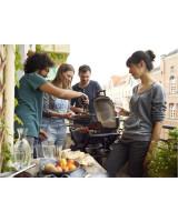 Weber Barbecue Elettrico Q2400 Dark Grey Stand 55020853
